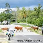 Keputusan Basikal Jelajah Malaysia 2014 Peringkat Kelima